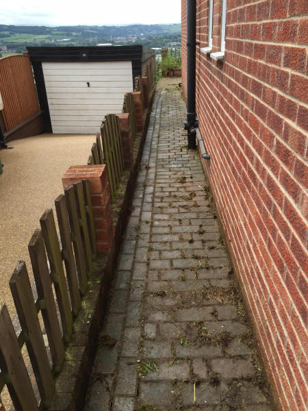 over grown path after tidy
