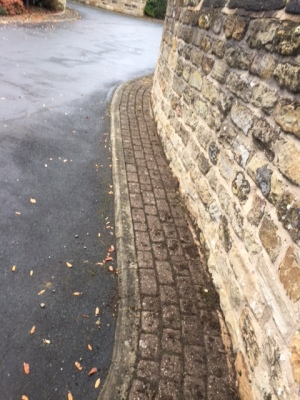 moss block paving path